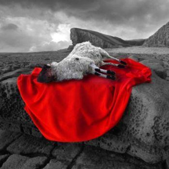 Dia 27 - La Pascua: La Sangre Derramada