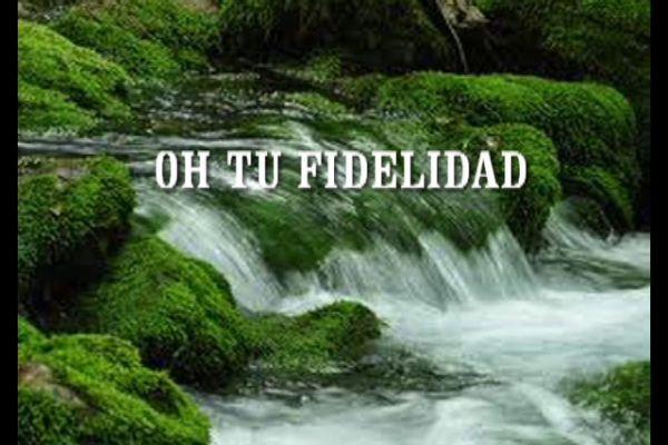 Your Faithfulness - Tu Fidelidad