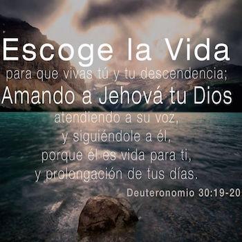 Palabra del Día | Deuteronomio 30:19-20 | Reflexiones Para