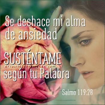 Salmo 119:28
