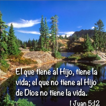 1 Juan 5:11-12