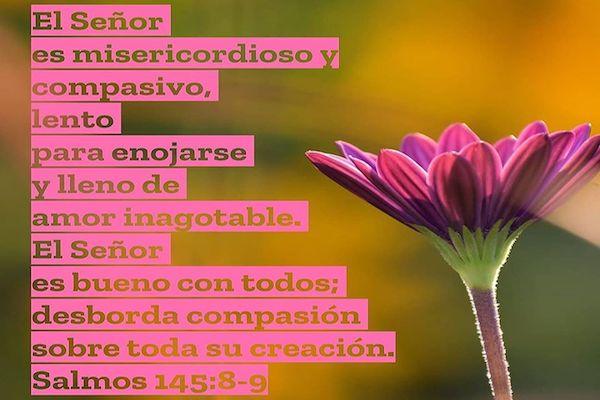Una REFLEXION del COVID-19 sacada del SALMO 145:8-9